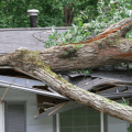 wind damaged roofs