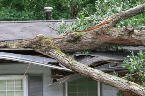 Recognizing-storm-damage-roofs
