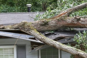Storm Damage Roofs