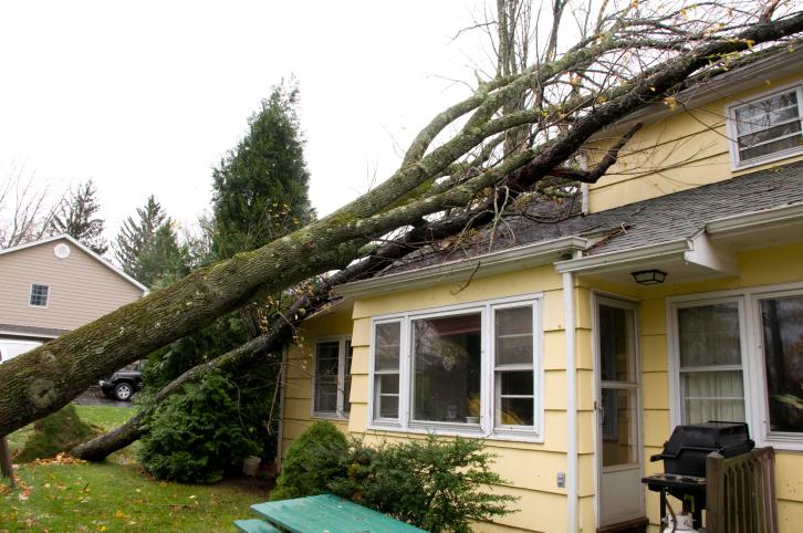 Wind Damaged Roofs, Gastonia, NC